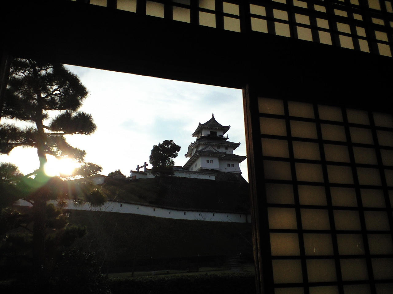 掛川城と、猫。